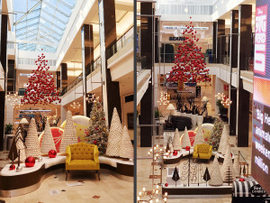 Westfield Montgomery Mall - Santa Reception